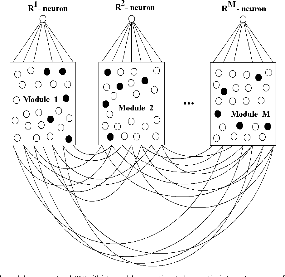 Figure 2 from author s personal copy modular neural networks with a schematic picture of the modular neural network nn2 with inter ccuart Choice Image