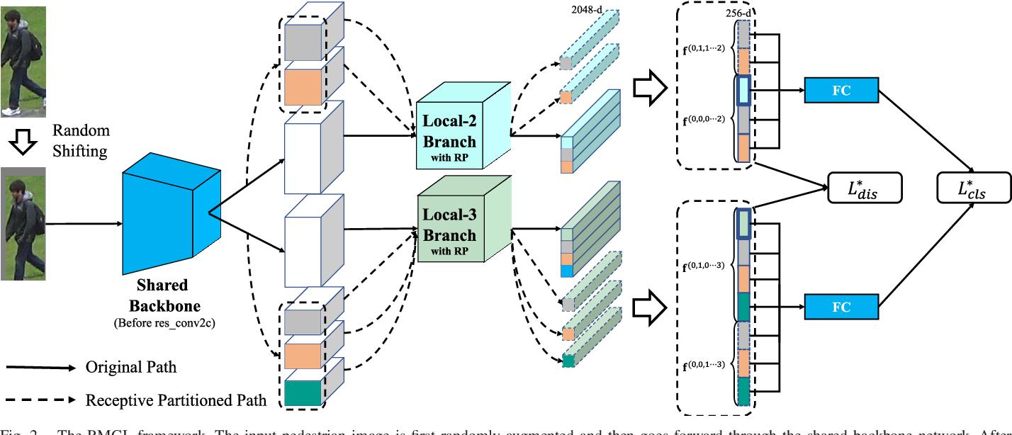 Figure 4 for Receptive Multi-granularity Representation for Person Re-Identification