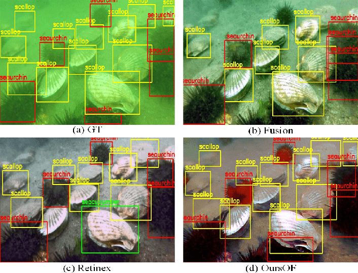 Figure 1 for Perceptual underwater image enhancement with deep learning and physical priors