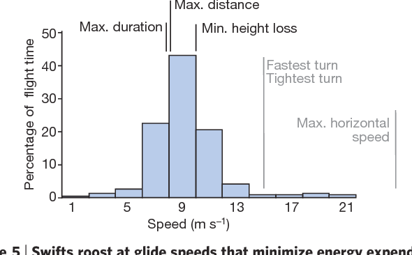 Figure 5 from How swifts control their glide performance