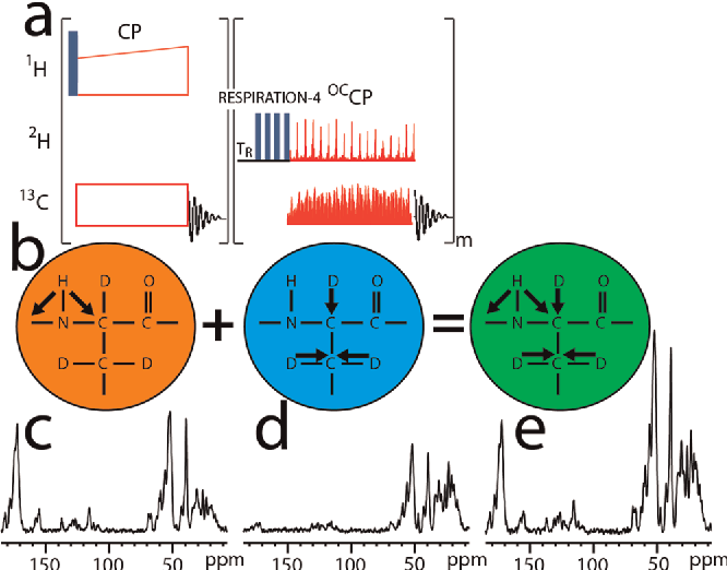 Designing dipolar recoupling and decoupling experiments for figure 3 ccuart Images