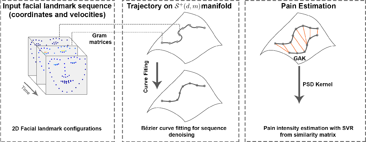 Figure 1 for Automatic Estimation of Self-Reported Pain by Interpretable Representations of Motion Dynamics