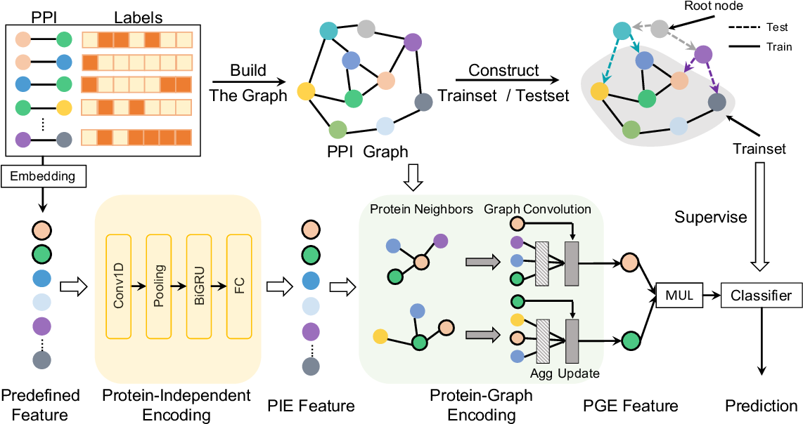 Figure 3 for Learning Unknown from Correlations: Graph Neural Network for Inter-novel-protein Interaction Prediction
