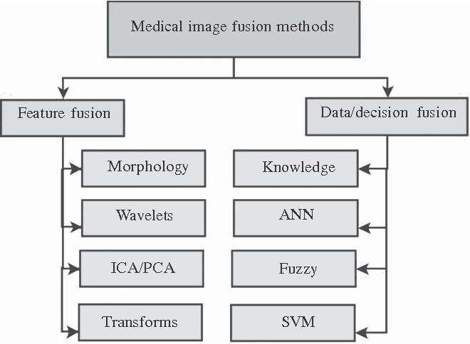 Figure 1 for A Review of Feature and Data Fusion with Medical Images
