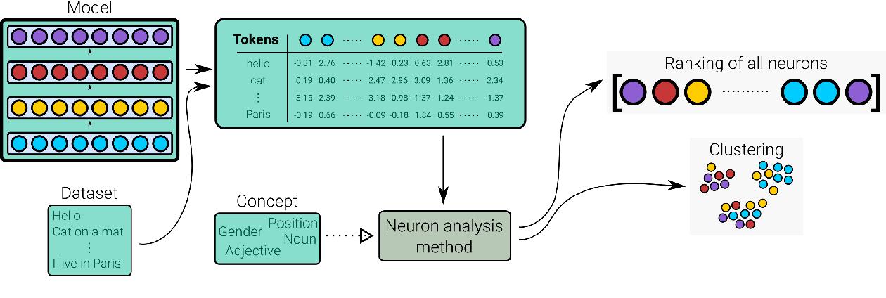 Figure 1 for Neuron-level Interpretation of Deep NLP Models: A Survey