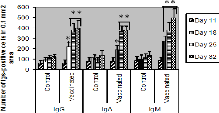 Figure 5 from Tissue distribution of B-lymphocyte subsets