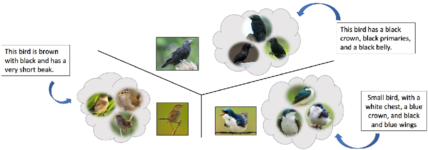 Figure 1 for Self Paced Adversarial Training for Multimodal Few-shot Learning