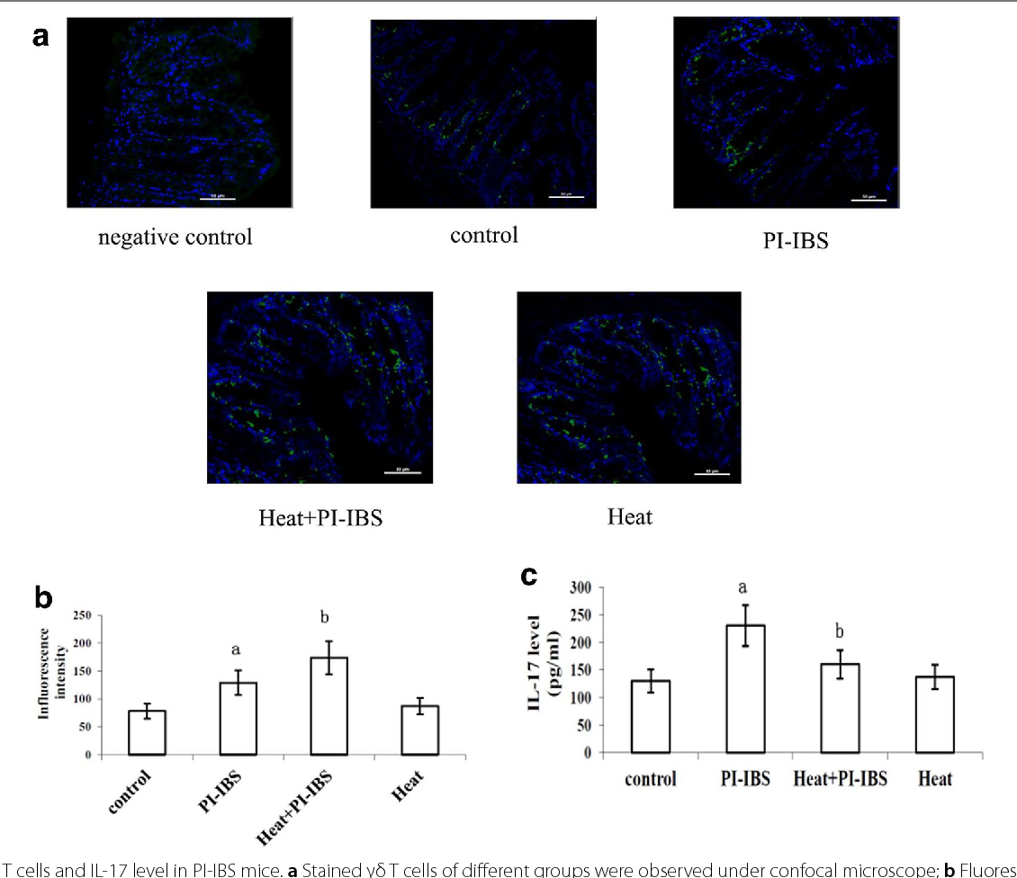Heat shock protein 70 protects mouse against post-infection