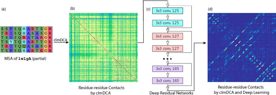 Figure 1 for Predicting protein inter-residue contacts using composite likelihood maximization and deep learning