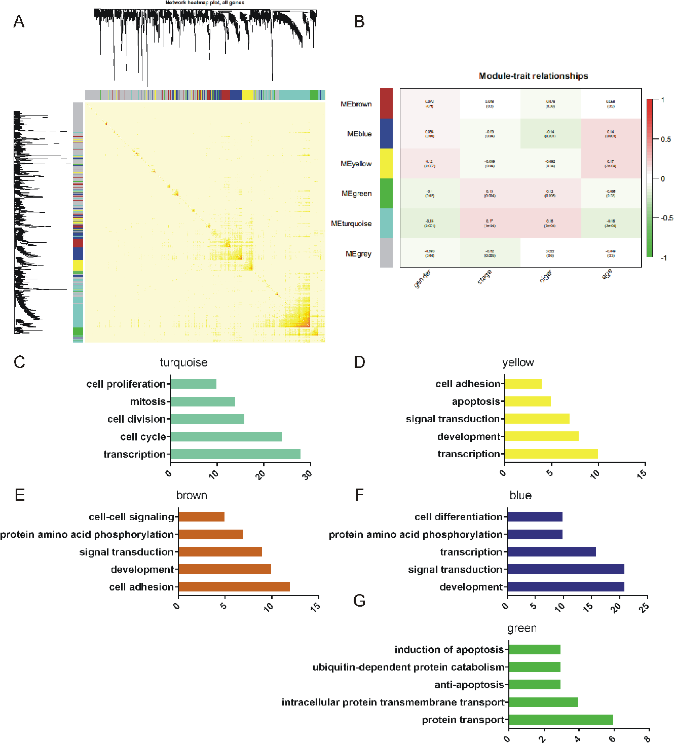 Figure 3 From Co Expression Analysis Revealed Ptch1 3utr Promoted