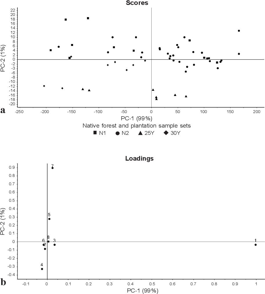 PDF] Examination of Wood Properties of Plantation-Grown
