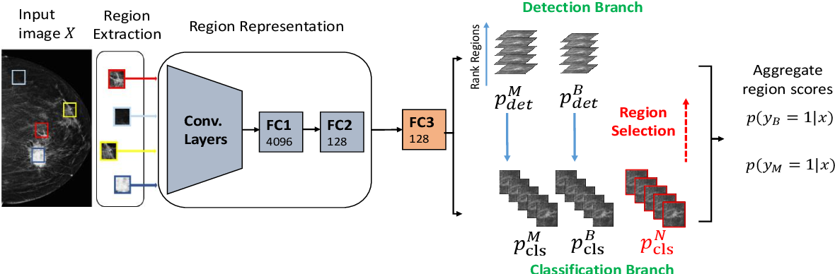 Figure 1 for Classification and Detection in Mammograms with Weak Supervision via Dual Branch Deep Neural Net