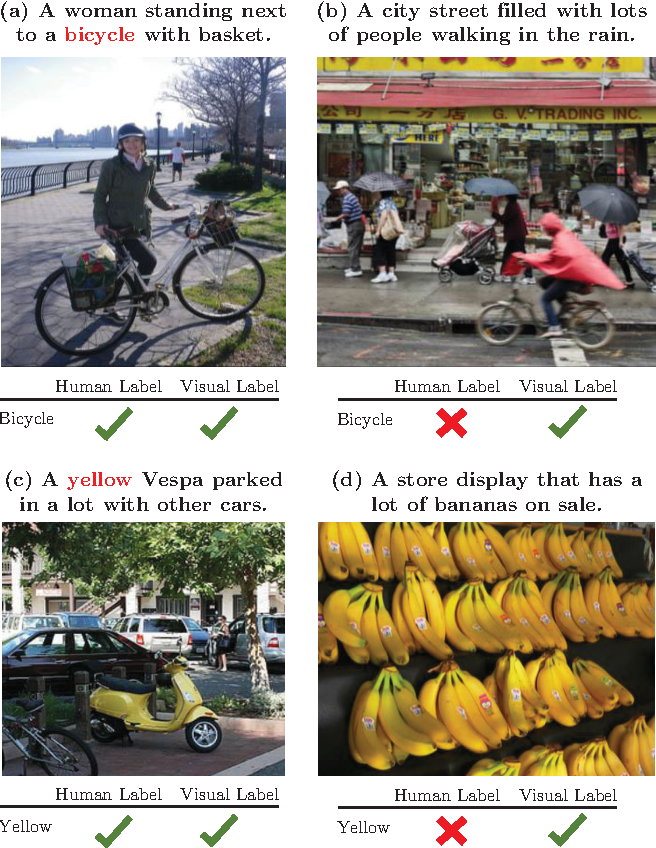 Figure 1 for Seeing through the Human Reporting Bias: Visual Classifiers from Noisy Human-Centric Labels