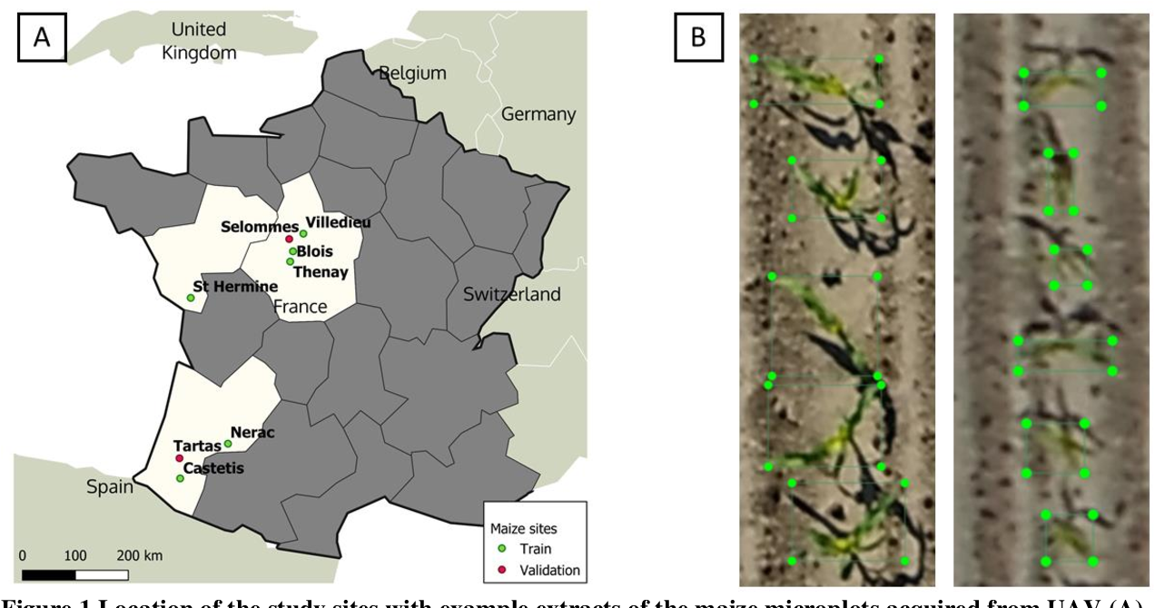 Figure 1 for Estimates of maize plant density from UAV RGB images using Faster-RCNN detection model: impact of the spatial resolution