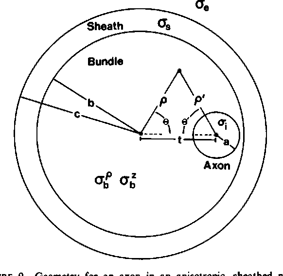 Figure 9 From The Magnetic Field Of A Single Axon A Comparison Of