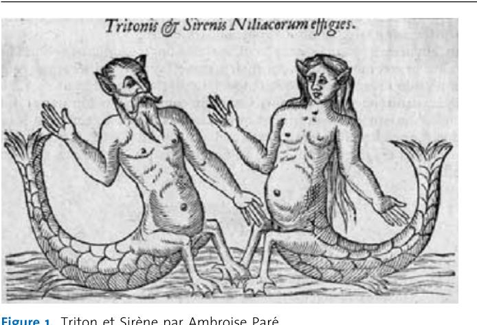 Figure 1. Triton et Sirène par Ambroise Paré.