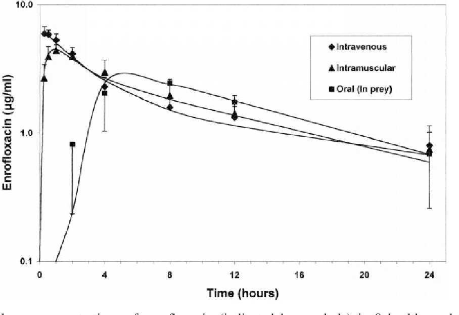 Figure 1 From Disposition Of Enrofloxacin In Red Tailed Hawks