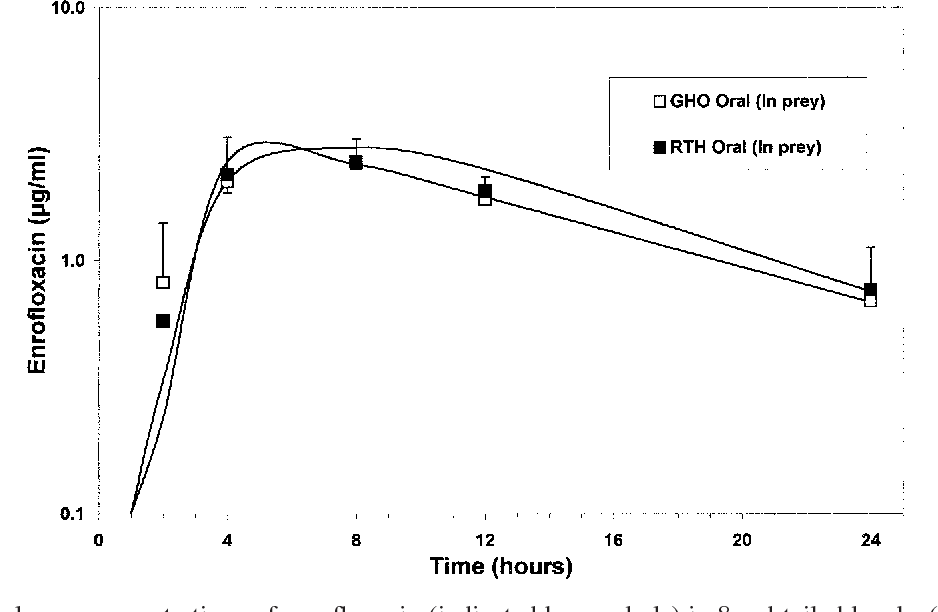 Figure 4 From Disposition Of Enrofloxacin In Red Tailed Hawks
