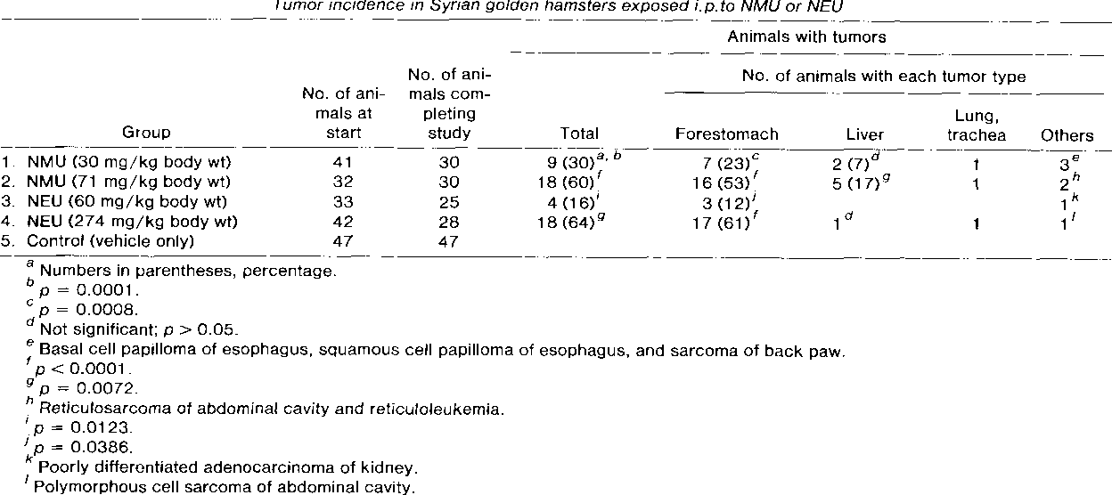 Table 2 Tumor incidence in Syrian golden hamsters exposed i. p. to NMU or NEU Animals with tumors