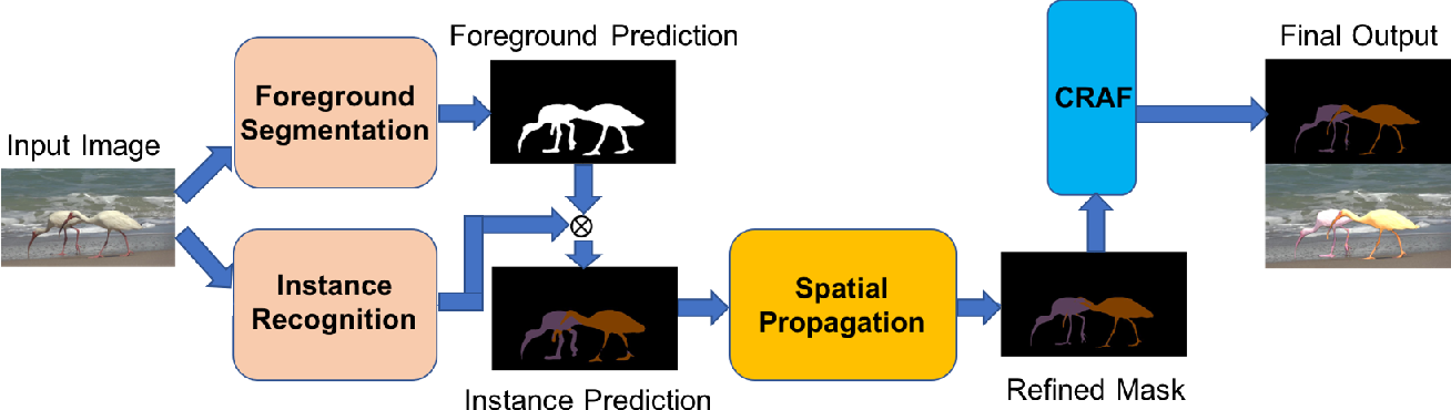 Figure 1 for Learning to Segment Instances in Videos with Spatial Propagation Network