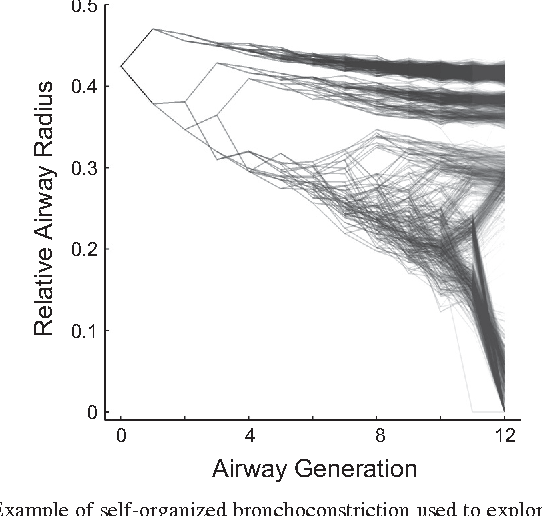 Figure 1 From Pendelluft In The Bronchial Tree Semantic Scholar