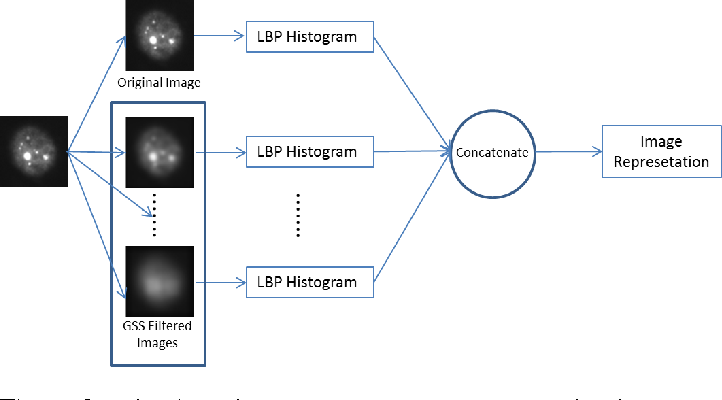 Figure 3 for HEp-2 Cell Classification: The Role of Gaussian Scale Space Theory as A Pre-processing Approach