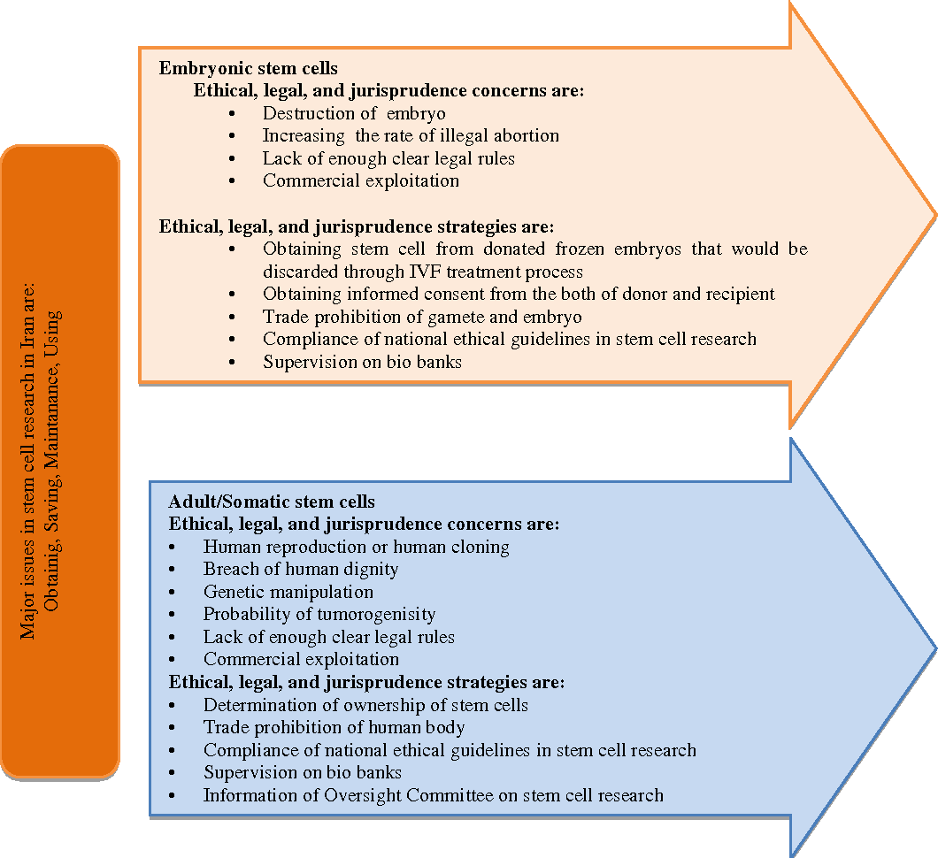Figure 1 from An overview on ethical considerations in stem cell