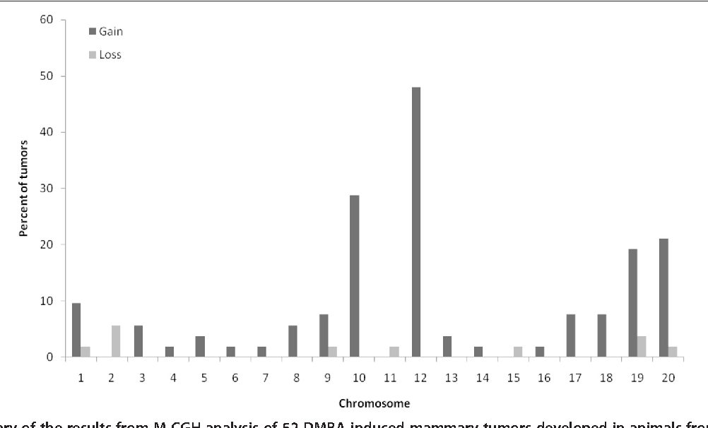 Figure 1 Summary of the results from M-CGH analysis of 52 DMBA-in (11 tumors), (SPRD-Cu3xWKY) F1 (6 tumors) and SPRD-Cu3x(SPRD-Cu gray bars) and losses (light bars) are presented as percentage of tumors th
