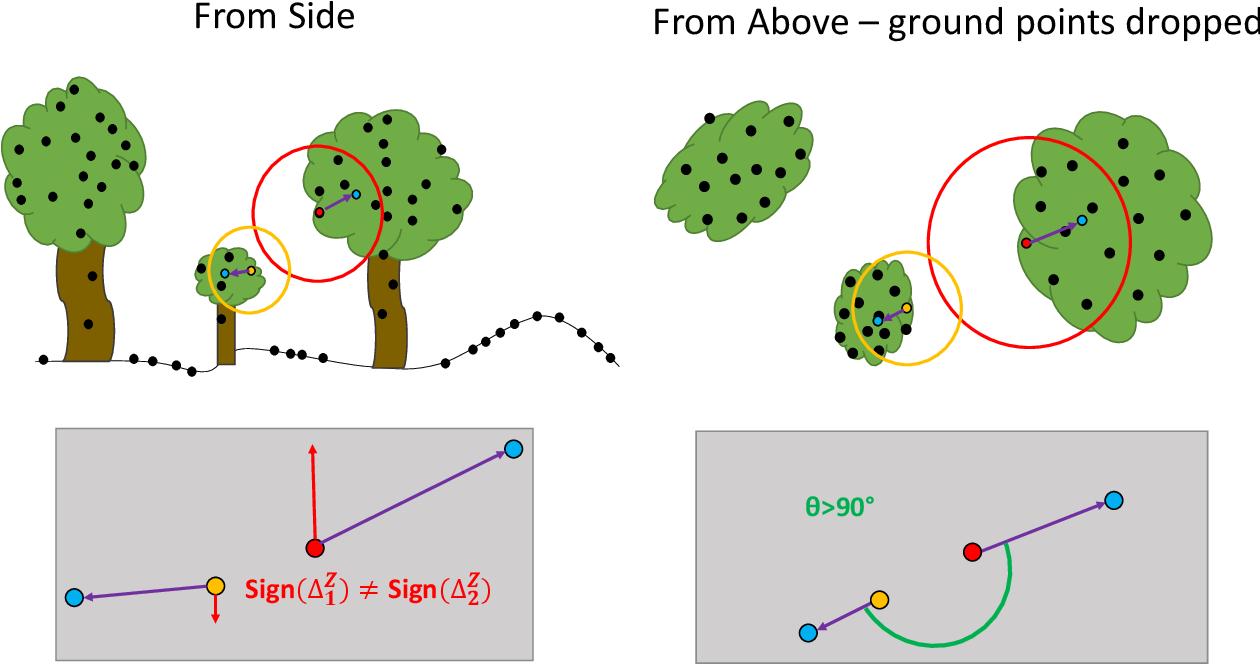Three-dimensional Segmentation of Trees Through a Flexible