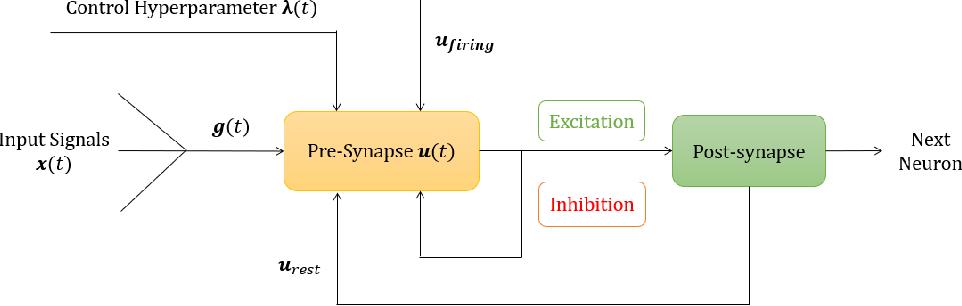Figure 3 for Bifurcation Spiking Neural Network