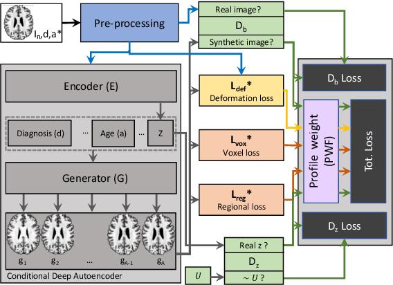 Figure 2 for Degenerative Adversarial NeuroImage Nets for 3D Simulations: Application in Longitudinal MRI