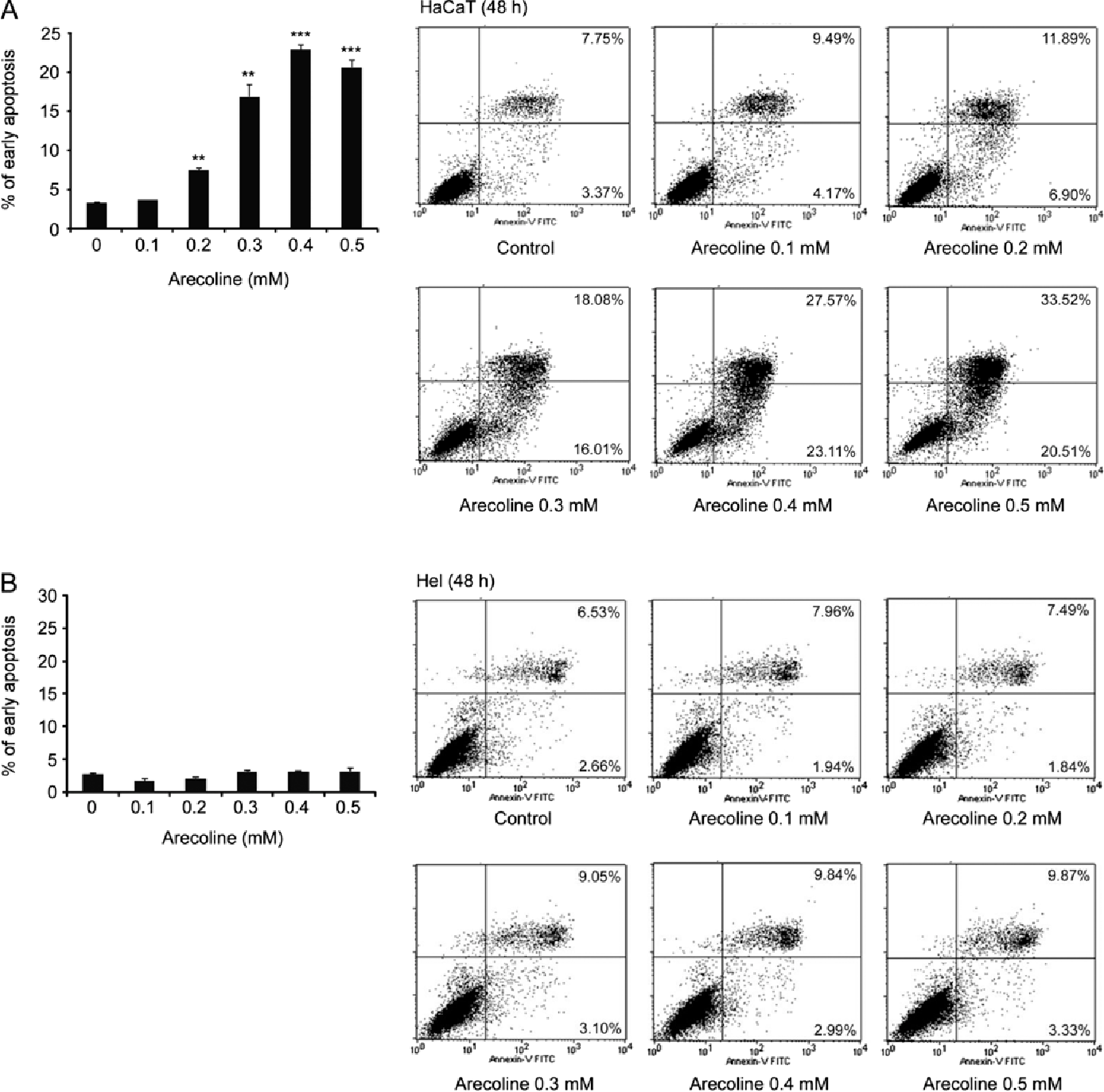 Figure 4. Arecoline-induced apoptosis in HaCaT and Hel cells. (A) Arecoline dose-dependently induced the apoptosis of HaCaT cells, (B) while arecoline did not induce apoptosis in the Hel cells. Cells were exposed or not to the indicated concentrations of arecoline for 24 h. The percentages of apoptotic cells were determined by flow cytometry as described in Materials and methods. Data are shown as means ± SD of three independent experiments. *P<0.05, **P<0.01 or ***P<0.001 indicates a significant upregulation of early apoptosis in cells treated with arecoline compared with the untreated control.