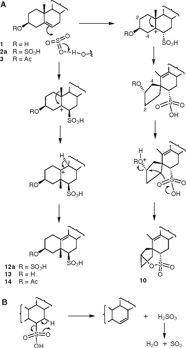 liebermann burchard reaction for cholesterol