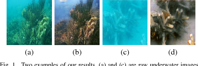 Figure 1 for Emerging from Water: Underwater Image Color Correction Based on Weakly Supervised Color Transfer