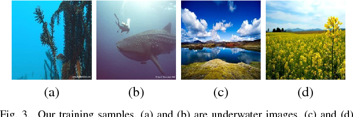 Figure 3 for Emerging from Water: Underwater Image Color Correction Based on Weakly Supervised Color Transfer