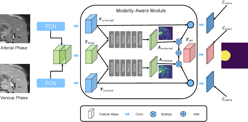 Figure 1 for Modality-aware Mutual Learning for Multi-modal Medical Image Segmentation