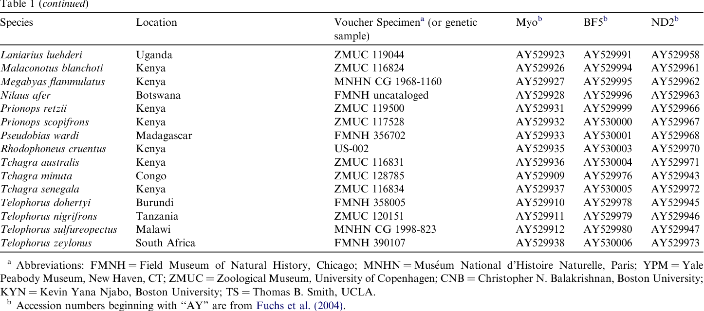 Phylogeny, biogeography and taxonomy of the African wattle