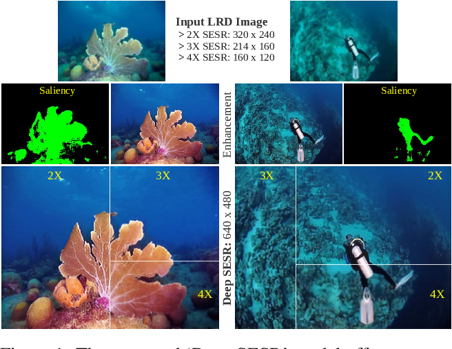 Figure 1 for Simultaneous Enhancement and Super-Resolution of Underwater Imagery for Improved Visual Perception