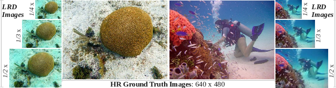 Figure 3 for Simultaneous Enhancement and Super-Resolution of Underwater Imagery for Improved Visual Perception