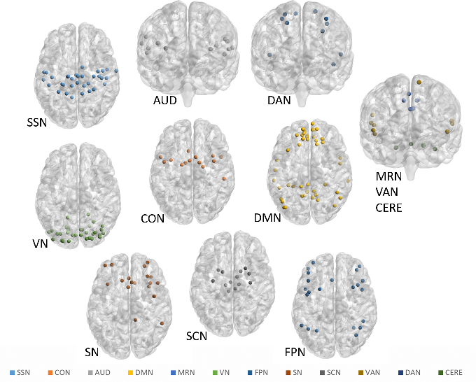 Figure 2 for A Bayesian incorporated linear non-Gaussian acyclic model for multiple directed graph estimation to study brain emotion circuit development in adolescence