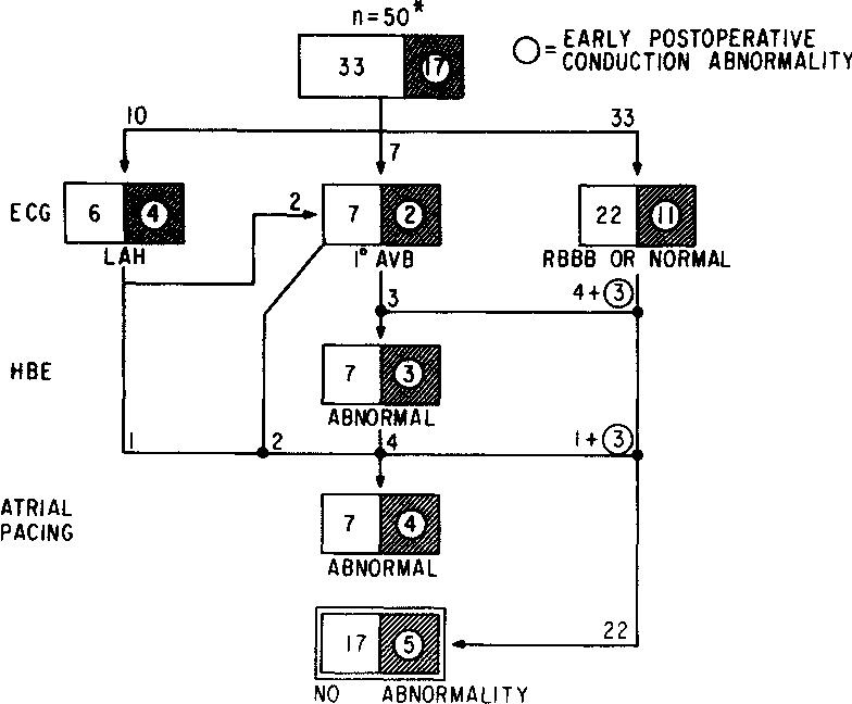 Figure 6 from Tetralogy of Fallot: postoperative electrophysiologic on retinopathy of prematurity pathophysiology, ankylosing spondylitis pathophysiology, bronchiolitis pathophysiology, pleural effusion pathophysiology, unstable angina pathophysiology, mitral valve stenosis pathophysiology, cushing's syndrome pathophysiology, meningitis pathophysiology, nephrotic syndrome pathophysiology, aspiration pneumonia pathophysiology, cardiac tamponade pathophysiology, typhoid fever pathophysiology, sarcoidosis pathophysiology, atrial flutter pathophysiology, umbilical hernia pathophysiology, alzheimer's disease pathophysiology, chronic obstructive pulmonary disease pathophysiology, mitral valve regurgitation pathophysiology, aortic stenosis pathophysiology, cardiogenic shock pathophysiology,