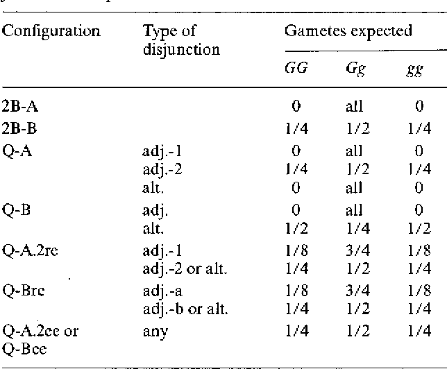 Table 3. The expected gametic output from different pairing configurations with different patterns of chromosome disjunction. The symbols used in the table for chromosome disjunction are explained in the text