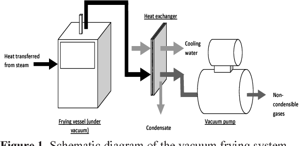 schematic diagram of the vacuum frying system