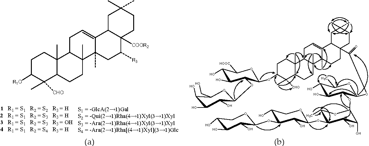 Figure 1. (a) Chemical structures of compounds 1–4; (b) Key HMBC correlations of compound 1 (arrows point from proton to carbon).