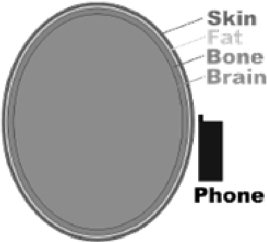 Effects and Analysis of Electromagnetic Radiation from Mobile Phone