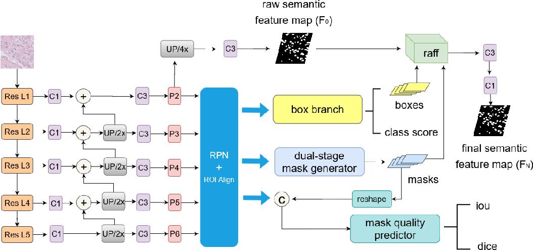 Figure 3 for Cell R-CNN V3: A Novel Panoptic Paradigm for Instance Segmentation in Biomedical Images