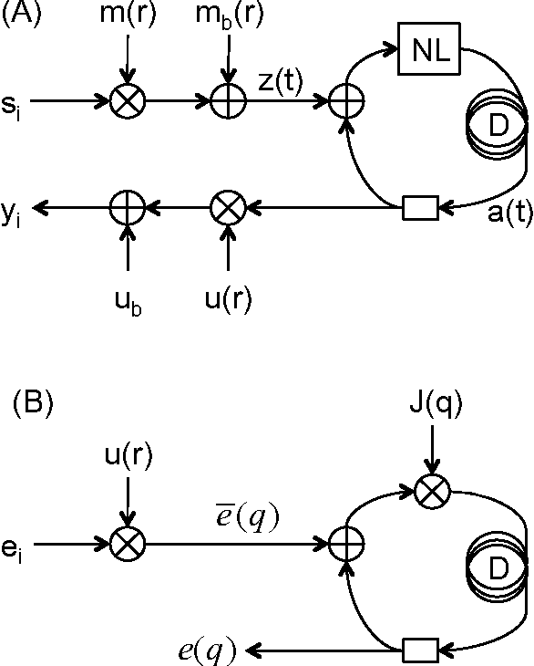 Figure 4 for Embodiment of Learning in Electro-Optical Signal Processors