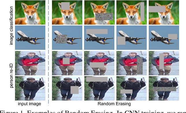 Figure 1 for Random Erasing Data Augmentation
