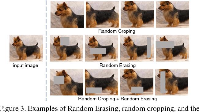 Figure 4 for Random Erasing Data Augmentation