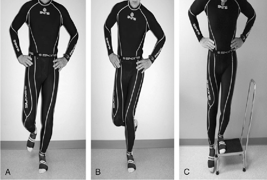 Figure 2 from Review and role of plyometrics and core
